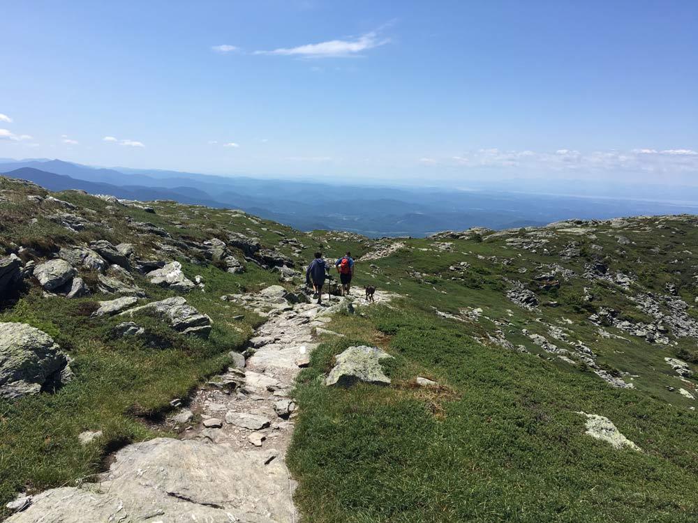 Stowe Hiking Trails
